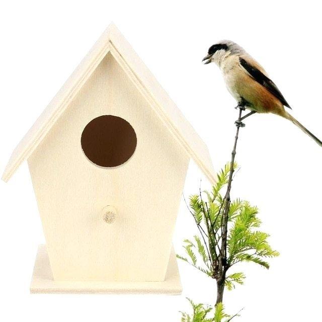 Kŕmidlá a budky pre vtáky
