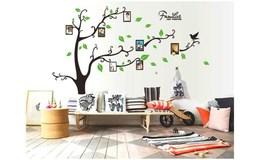 GFT Strom života na stenu